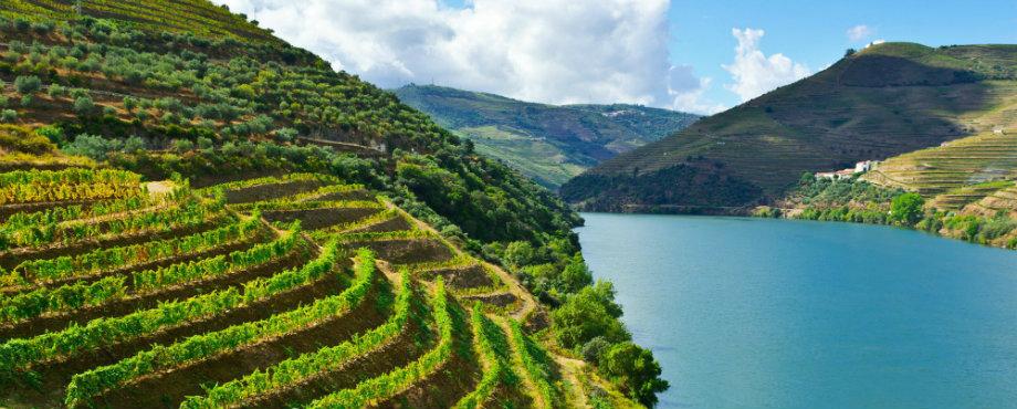 Weinregionen 7 luxuriöse geheime Weinregionen feature 3